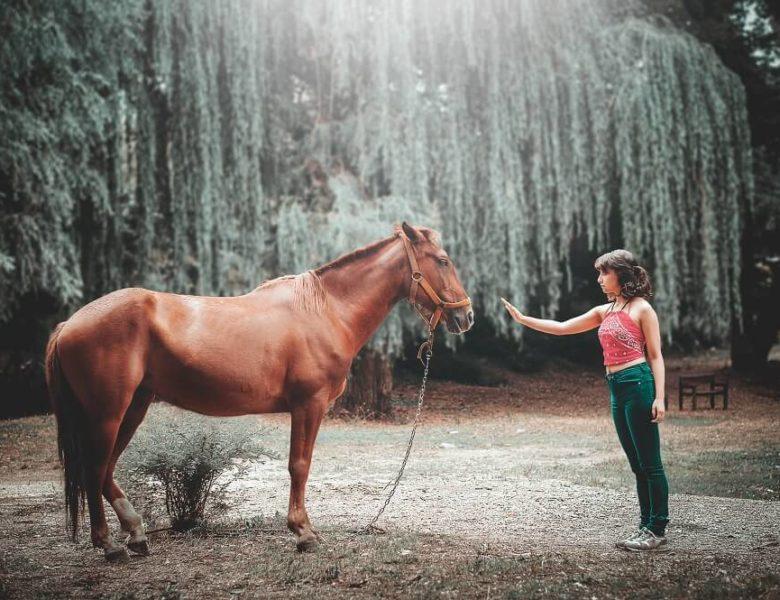 7 façons de devenir un meilleur cavalier sans être en selle